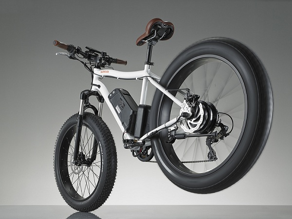 RadRover Electric Fatbike-2