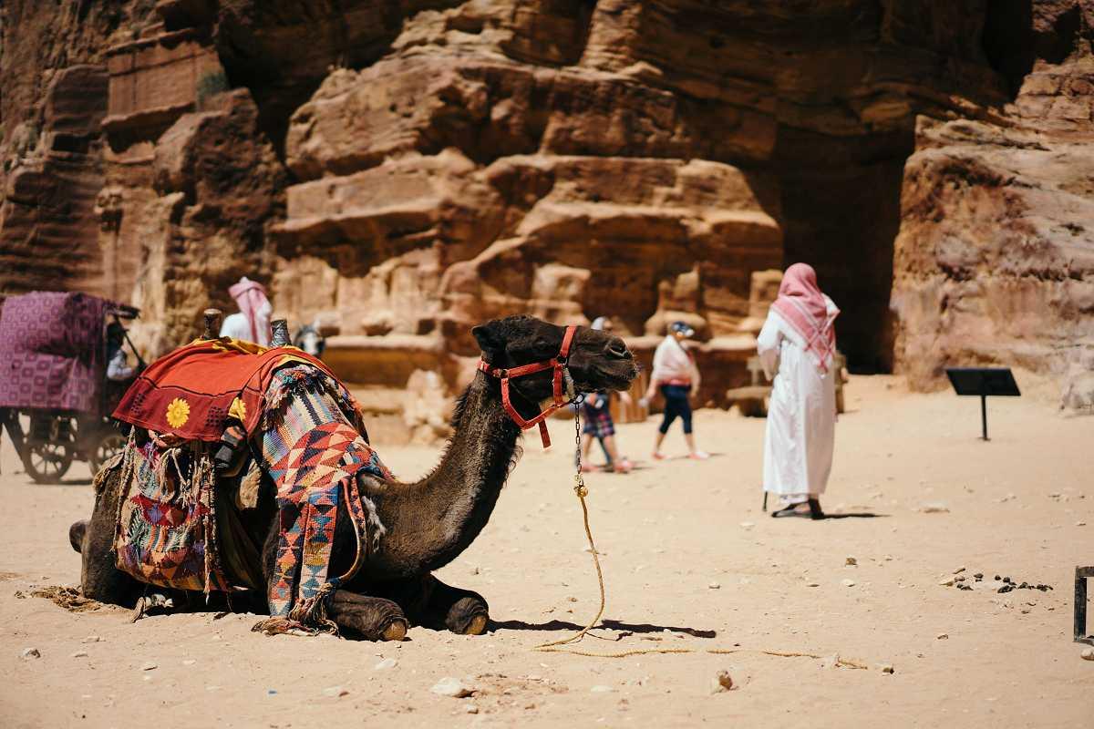Verkehrsregeln Vereinigte Arabische Emirate