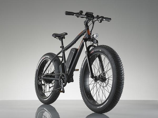 RadRover Electric Fatbike