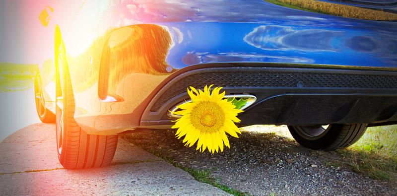 nachhaltig Autofahren